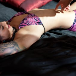 Holly D in 'Daring Sex' Daring X Files 10 (Thumbnail 10)