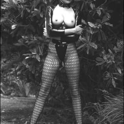 Lady Sonia in 'Lady Sonia' Vintage leggy domme (Thumbnail 6)
