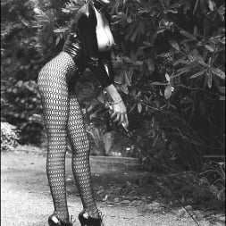 Lady Sonia in 'Lady Sonia' Vintage leggy domme (Thumbnail 14)