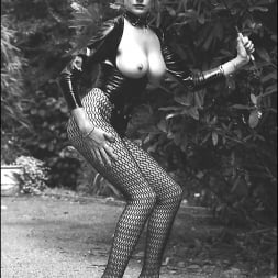 Lady Sonia in 'Lady Sonia' Vintage leggy domme (Thumbnail 15)