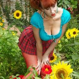 Red XXX in 'Red XXX' Garden (Thumbnail 2)